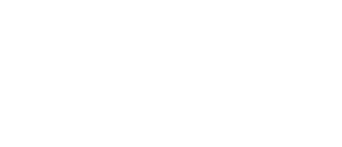 Reverie Brewing Company